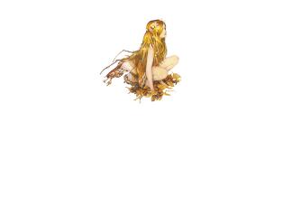 logo_AqualungCentroBenessere_TrattCorpo_ve_bn