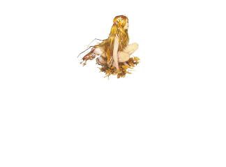 logo_AqualungCentroBenessere
